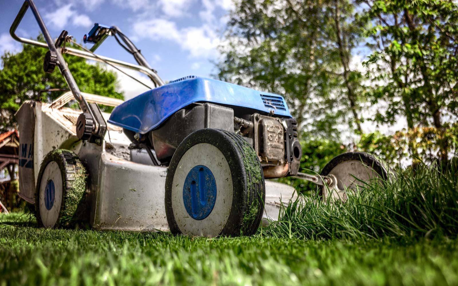 Pielęgnacja ogrodów w Białymstoku - koszenie trawników